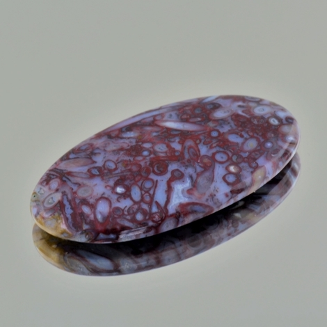 Fossils oval 40.87 ct
